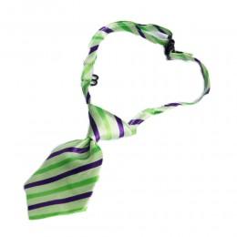 Krawat dla psa kota święta wesele zielony w paski obwód szyi 40 cm