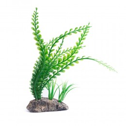 Dekoracja do akwarium sztuczne rośliny na kamieniu