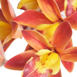 Dziki storczyk pomarańczowy gałązka kwiat sztuczny kwiaty storczyki