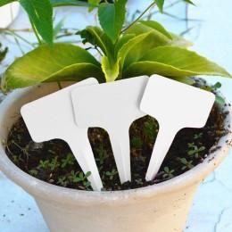 ETYKIETY do roślin kwiatów ziół TABLICZKI znacznik z markerem