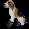 Ciepłe buty dla psa na zime z gumową podeszwą NIEBIESKO ZIELONE