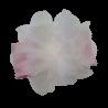 Różowa opaska na głowę dla niemowlaka z dużym białym kwiatem