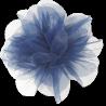 Biała opaska na głowę dla niemowlaka z dużym niebieskim kwiatem
