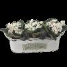 Metalowa osłonka na doniczki owalna na 3 kwiaty zioła
