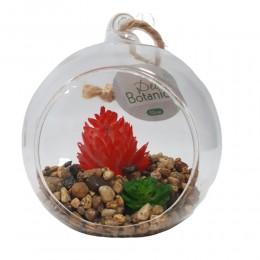 Szklana bombka wisząca z kaktusem czerwonym / ogródek w szkle