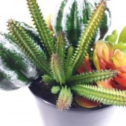 Sztuczny kaktus SAN PEDRO 20cm na piku do kompozycji kwiatowych