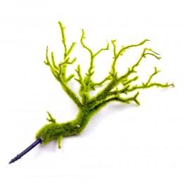 Zielona gałazka dekoracyjna