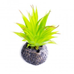 Sztuczna roślina AGAWA do terrarium