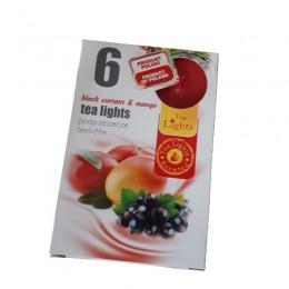 Podgrzewacze TEALIGHT świeczki zapachowe BLACK CURRANT&MANGO 6 szt