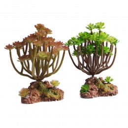 Sztuczna roślina SUKULENT dekoracja do akwarium terrarium