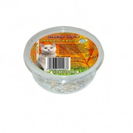 Trawa dla kota w postaci nasion Produkt NATURALNY i EKOLOGICZNY