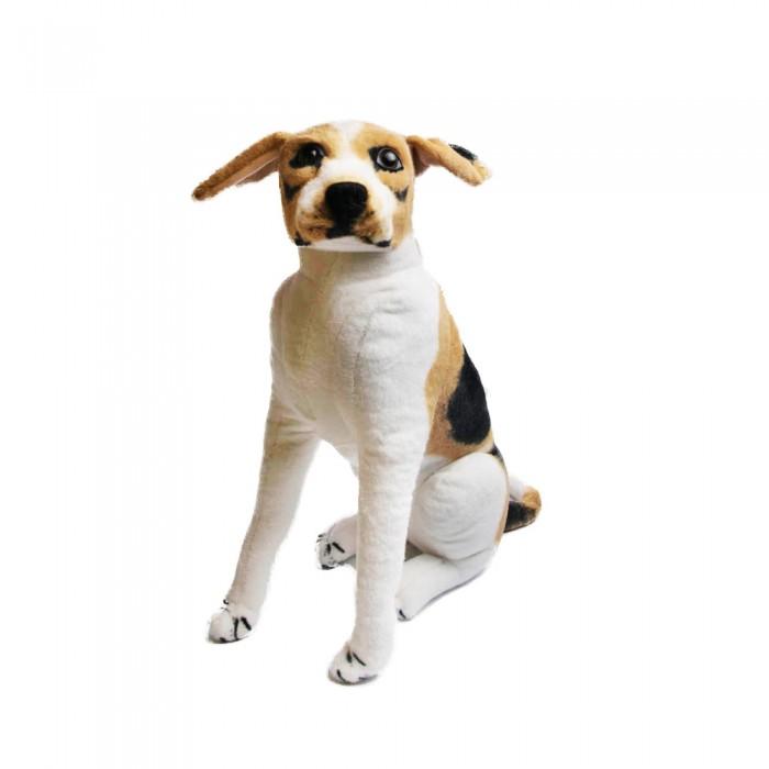 Duży pluszowy pies BEAGLE 57cm maskotka przytulanka dla dziecka