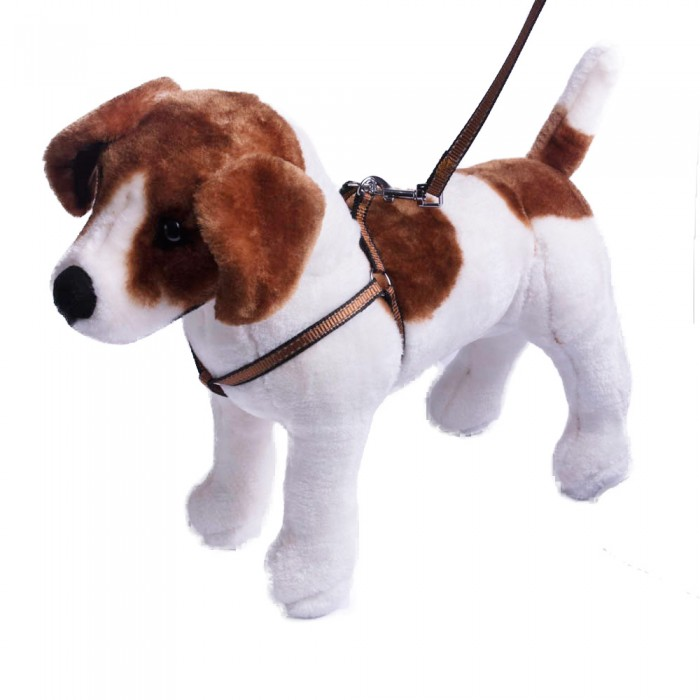 Szelki i smycz dla psa ze świecąca nitką   Komplet smycz obroża