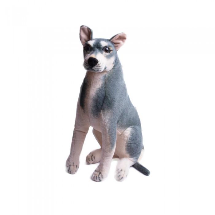 Duży pluszowy pies OWCZAREK 57 cm maskotka przytulanka dla dziecka