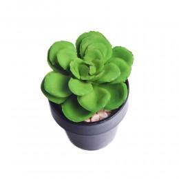 Kaktusy sukulenty KAPUSTA ROJNIK sztuczna roślina kwiat w doniczce
