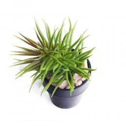 Kaktusy mini SUKULENT SENECIO sztuczna roślina kaktus w doniczce
