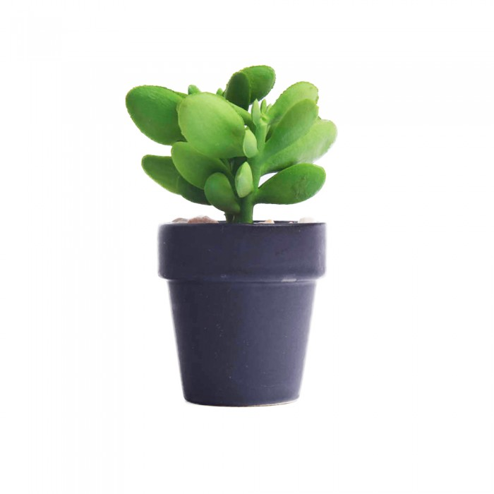 Kaktusy Sukulent Grubosz Sztuczna Roslina Mini Kaktus W Doniczce