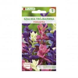 Legutko nasiona kwiatów szałwia trójbarwna mieszanka 3g