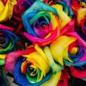 Sztuczne kwiaty i owoce